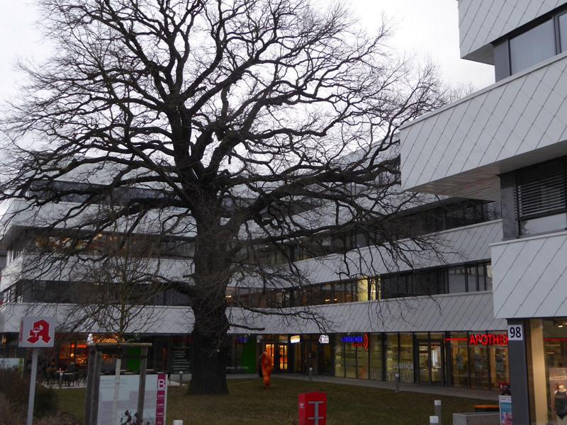 Gesundheitszentrum Dresden-Klotzsche